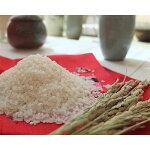 【ふるさと納税】【無洗米】奈良県大和高田市産ヒノヒカリ5kg【1088507】