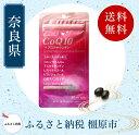 【ふるさと納税】CoQ10+アスタキサンチン