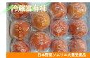 【ふるさと納税】冷蔵富有柿 日本野菜ソムリエ協会大賞受賞品(10?12個)12月中旬から順次発送予定です