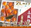 【ふるさと納税】富有柿(一個250g以上の柿を11〜13個)11月中旬から順次発送予定です