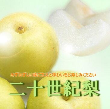 【ふるさと納税】奈良の20世紀梨(約5kg)※着日時はご指定いただけません