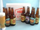 【ふるさと納税】名水を使った曽爾高原ビール10本セット[お中元]