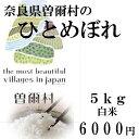 【ふるさと納税】曽爾の風土とおいしい水が育てた曽爾産ヒトメボレ5kg