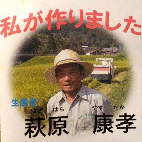 【ふるさと納税】萩原康孝のこしひかり 玄米30kg※9月中旬以降順次発送