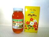 【ふるさと納税】日本蜜蜂ハチミツ1,000g