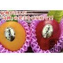 【ふるさと納税】紀州完熟マンゴー『吉玉』(約700〜750g