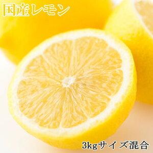 【ふるさと納税】【産直】和歌山産レモン約3kg(サイズ混合)※2022年3月上旬〜4月下旬頃順次発送予定