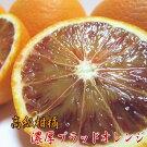和歌山県産濃厚ブラッドオレンジ