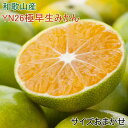 【ふるさと納税】【産直】YN26極早生みかん約5kg(2S〜...
