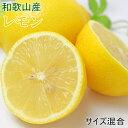 【ふるさと納税】【産直】和歌山産レモン約5kg(サイズ混合)...