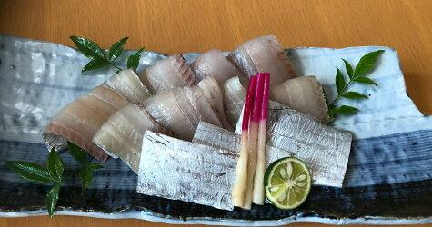 【ふるさと納税】紀州備長炭干し太刀魚干物270〜300g