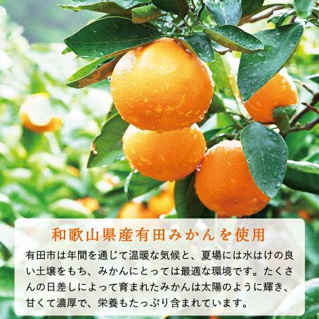 【ふるさと納税】果樹園の濃厚みかんジュレまるごと1個入り(12個セット)