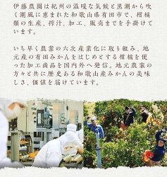 【ふるさと納税】5種みかんピュアジュースセット有田みかんジュース 画像1