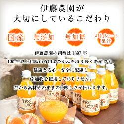 【ふるさと納税】5種みかんピュアジュースセット有田みかんジュース 画像2