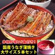 【ふるさと納税】国産うなぎ蒲焼き大サイズ5本セット(肝吸い付き)