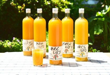 5種みかんジュース お得なボトルセット