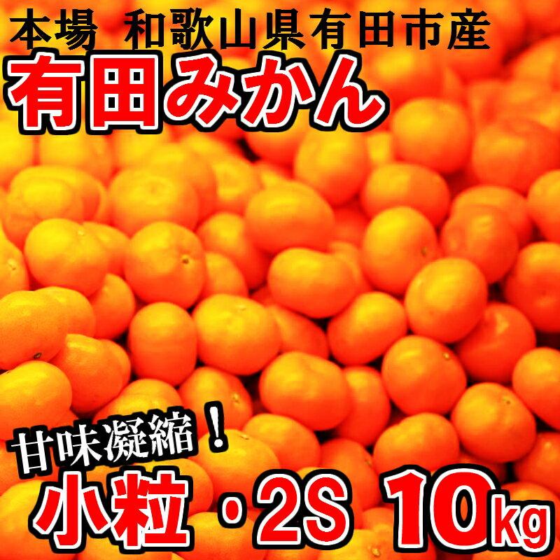 小粒・2S 有田みかん「未来への虹」10kg 送料無料 産地直送