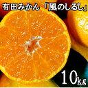 【ふるさと納税】有田みかん「風のしるし」10kg 送料無料 ...