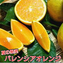 【ふるさと納税】数量限定:有田市生まれのバレンシアオレンジ(5kg)