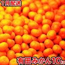 【ふるさと納税】★1月配送★有田みかん「未来への虹」10kg...
