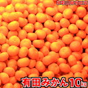 【ふるさと納税】有田みかん「未来への虹」10kg 送料無料 ...