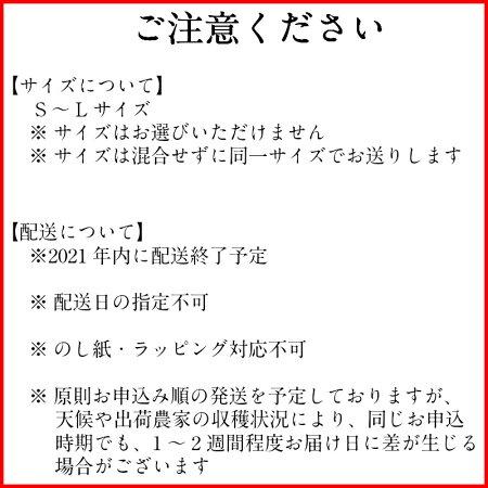 【ふるさと納税】有田市認定みかん(5kg)