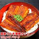 【ふるさと納税】国産うなぎ蒲焼きカット100g×6パックセット
