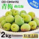 【ふるさと納税】青梅(南高梅)特選大粒 2kg 和歌山県産