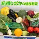 【ふるさと納税】紀州の野菜・果物セット(15〜20品目詰め合...