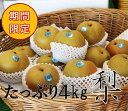 【ふるさと納税】旬の美味しさをお届け!豊水(梨)たっぷり4k...