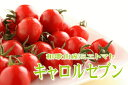 【ふるさと納税】ミニトマト キャロルセブン 2kg【和歌山産...