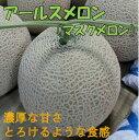 【ふるさと納税】斎藤農園のアールスメロン(マスクメロン)2玉...