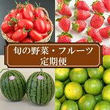 【ふるさと納税】旬の野菜・フルーツ定期便4回