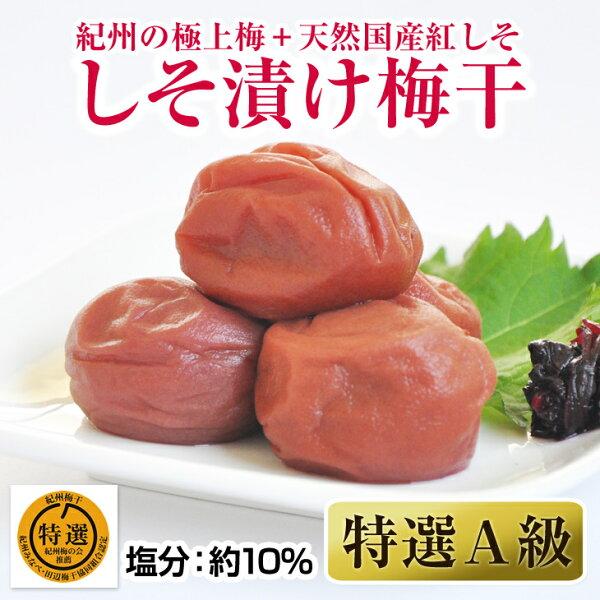 ふるさと納税 しそ漬け梅干(紀州南高梅)1kg特選A級大粒3L以上和歌山県産