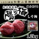 【ふるさと納税】 紀州南高梅 しそ梅3Lサイズ 1.2kg(...