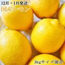 K1-76【ふるさと納税】【12月・1月発送】【手選別・産直...