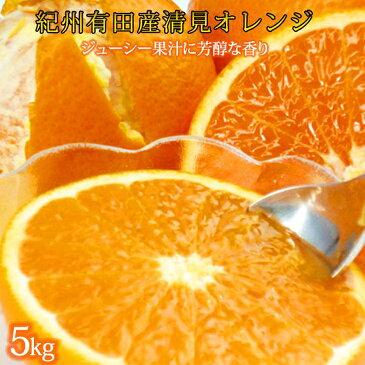 【ふるさと納税】とにかくジューシー清見オレンジ 5kg 2021年3月下旬頃〜4月下旬頃発送予定