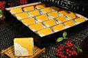 【ふるさと納税】高級南高梅はちみつ梅個包装20粒入 紀州塗箱 網代模様仕上