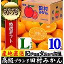 【ふるさと納税】田村みかん/特選ギフト品10kg【Lサイズ】...