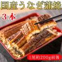 【ふるさと納税】ふっくら柔らか うなぎ蒲焼き 特大サイズ3尾