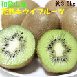 【ふるさと納税】[果物の王様]和歌山産完熟キウイフルーツ約3.5kg(2L・3L・4Lサイズ・個数20個〜27個おまかせ)秀品※着日指定不可