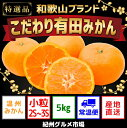 【ふるさと納税】【こだわり】有田みかん 5kg(2S・3Sサ...