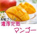 【ふるさと納税】【高級】【大玉】濃厚!こだわりの完熟マンゴー...