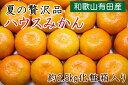 【ふるさと納税】【夏の贅沢品】有田のハウスみかん約2.5kg...