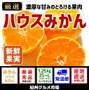 【ふるさと納税】【高級】ハウスみかん 1.25kg(L〜2S...