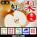 【ふるさと納税】シャリシャリ食感 旬の梨 豊水 5Kg(L〜...