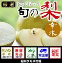【ふるさと納税】シャリシャリ食感 旬の梨 幸水 5Kg(L〜4L) 紀州グルメ市場※7月下旬頃〜8月中旬頃に順次発送予定