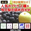 【ふるさと納税】【秋の味覚セット】人気のブドウ2種&旬の梨の...
