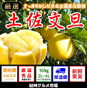 【ふるさと納税】土佐文旦(大玉:2L〜4L)たっぷり10kg...