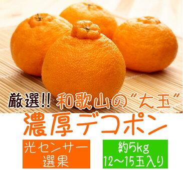 【ふるさと納税】厳選!!和歌山の濃厚
